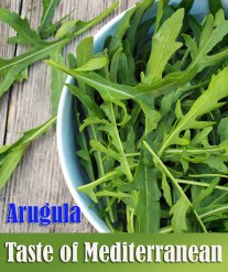 Arugula - Taste of Mediterranean