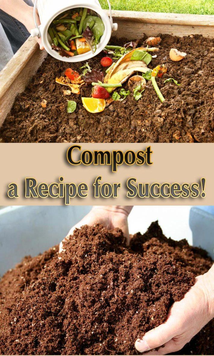 Compost – a Recipe for Success!