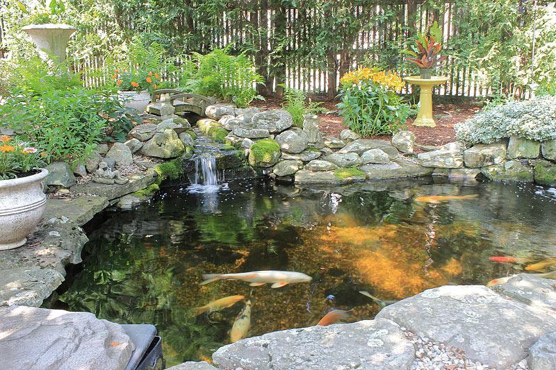 Quiet Corner:Inspiring Backyard Pond Ideas - Quiet Corner on Pond Ideas Backyard id=57182