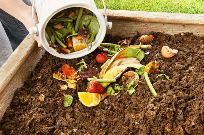 DIY - Organic Composting & Manure