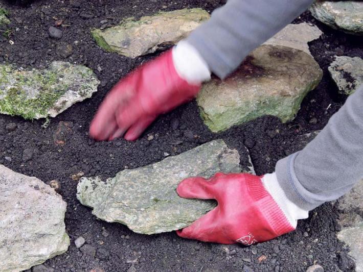Starting a Rock Garden