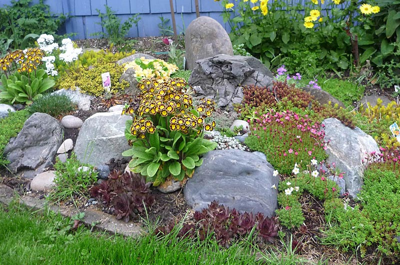 ... Stunning Rock Garden Design Ideas (6)