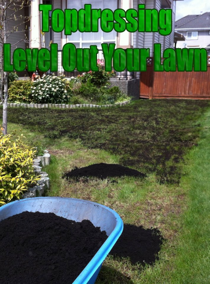 Topdressing – Level Out Your Lawn