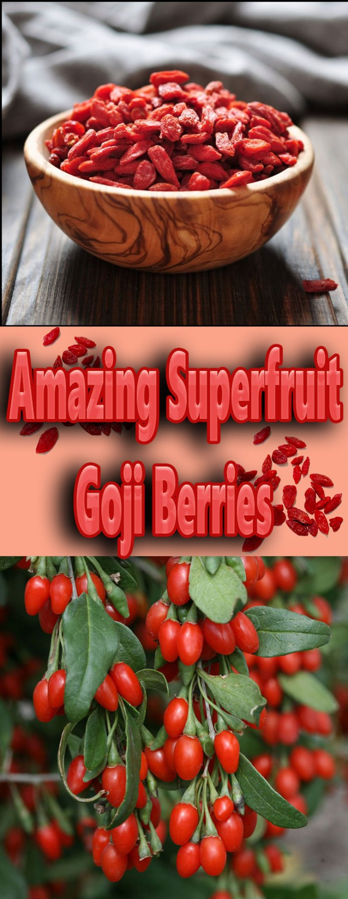 Amazing Superfruit – Goji Berries