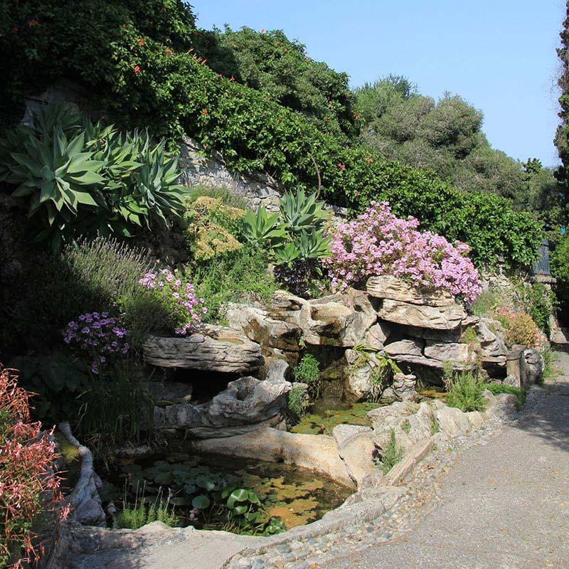 Quiet Corner Container Gardening Ideas: Quiet Corner:Beautiful Rock Garden Ideas