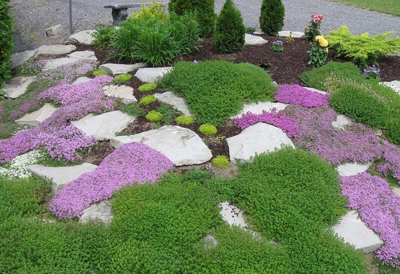 Quiet Corner:Beautiful Rock Garden Ideas - Quiet Corner on Backyard Rock Garden Ideas id=53869