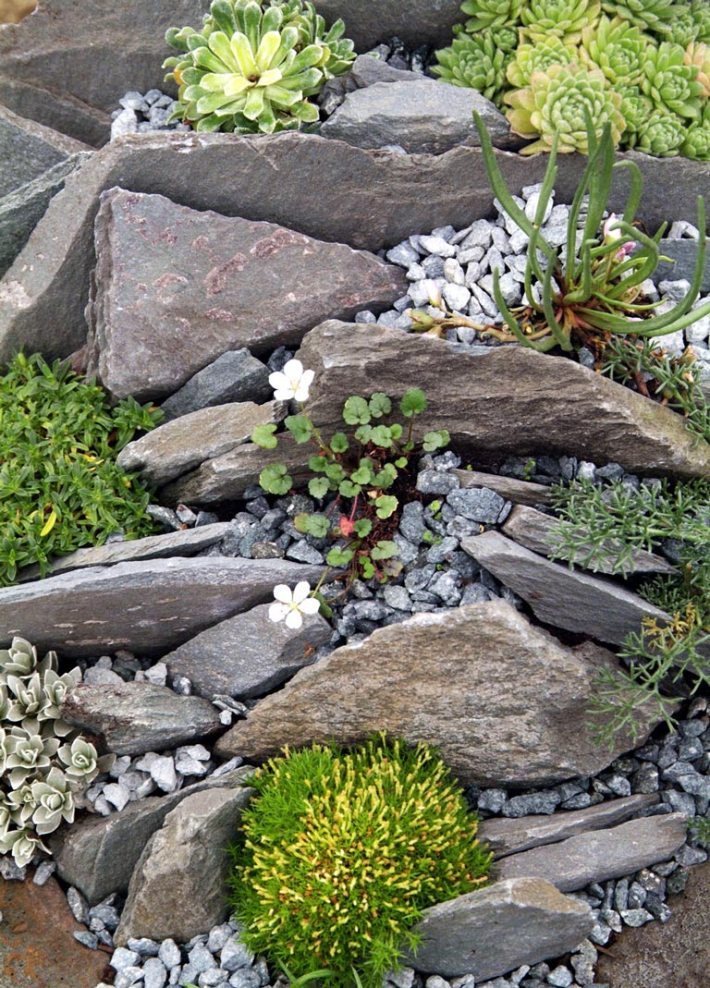 Quiet Corner:Beautiful Rock Garden Ideas - Quiet Corner on Backyard Rocks  id=62656