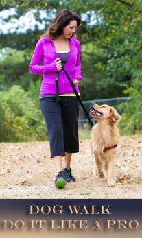 Dog Walk - Do It Like a Pro