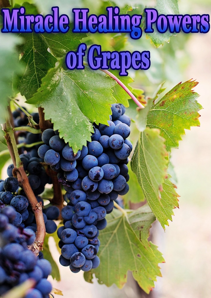 Miracle Healing Powers of Grapes