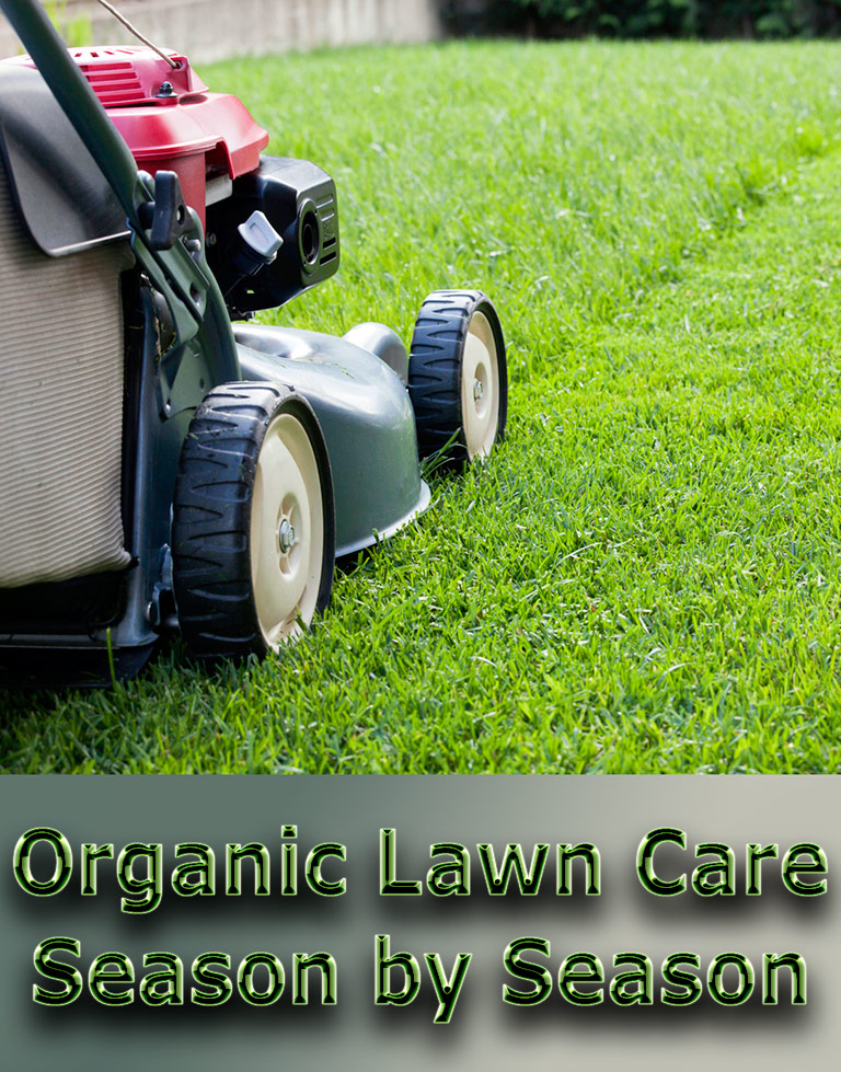 Organic Lawn Care: Season by Season - Quiet Corner