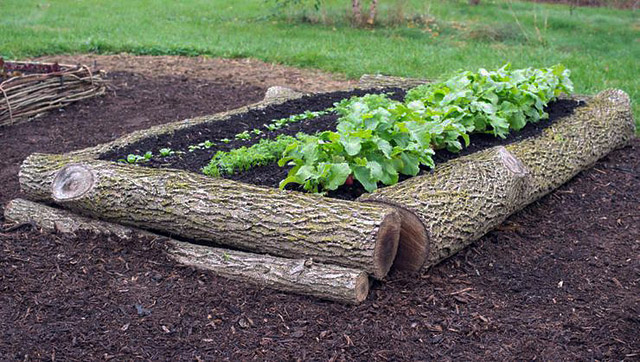 Using Newspaper To Line A Raised Garden Bed