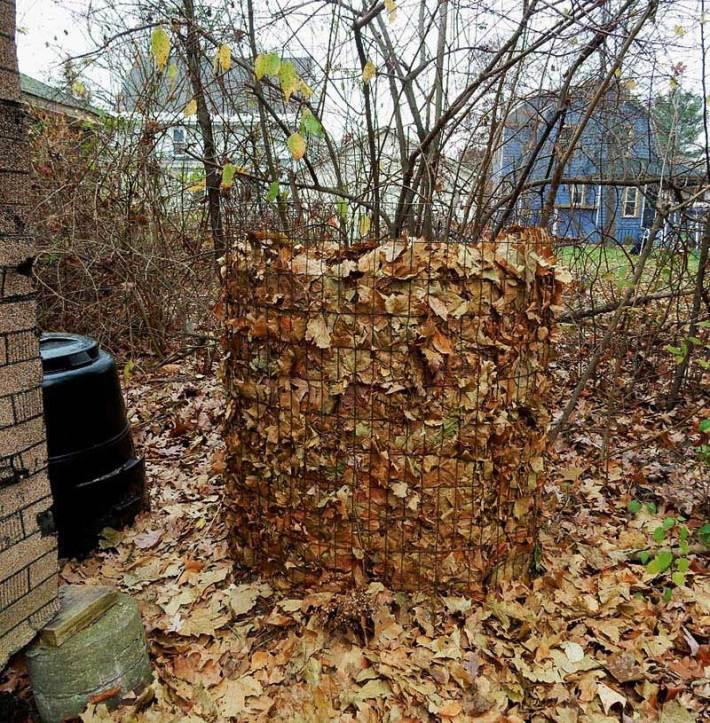 Composting Leaves