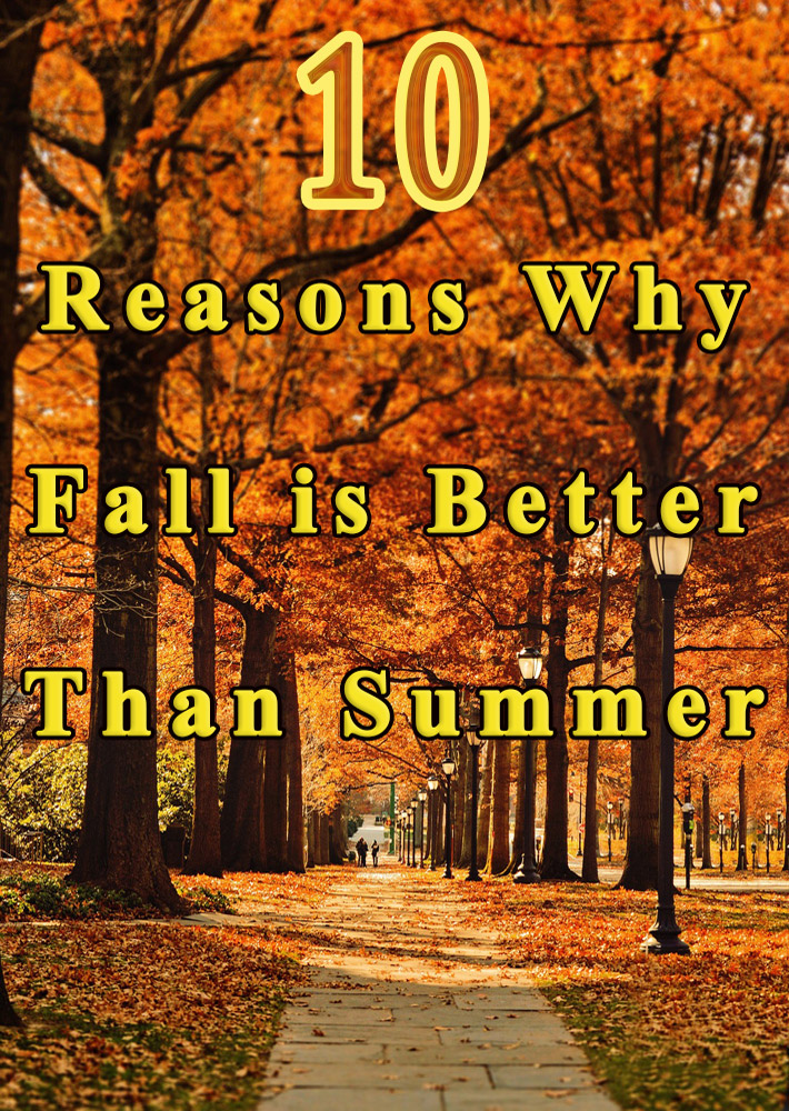 10 Reasons Why Fall is Better Than Summer