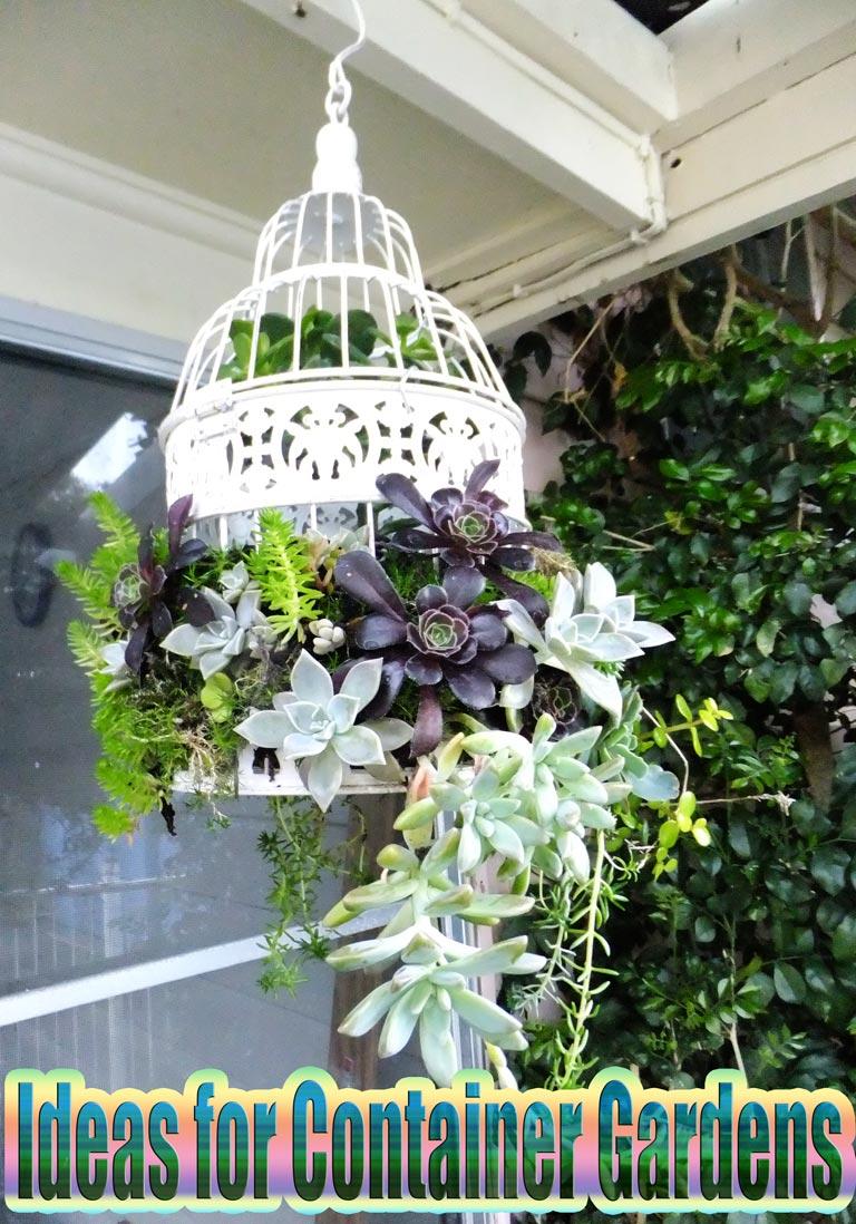Ideas for Container Gardens Quiet CornerIdeas for