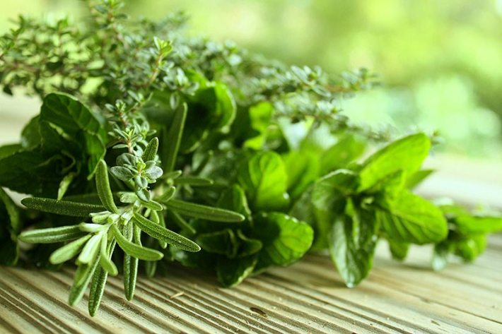 5 Herbs that Thrive Inside