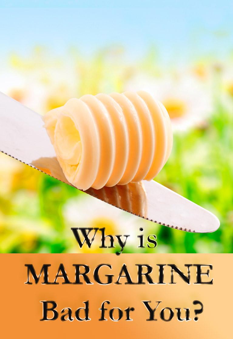 Dogs Eating Margarine