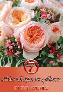 7 Most Expensive Flowers in the World