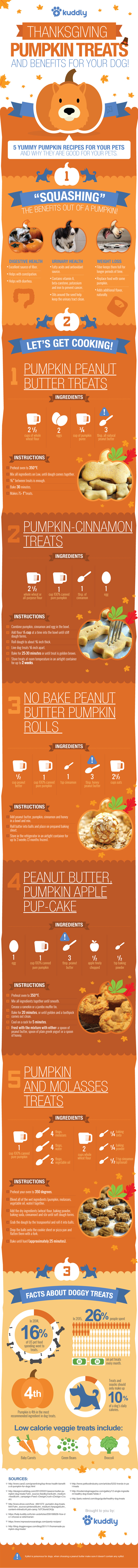 5 Pumpkin Treat Recipes for Your Dog