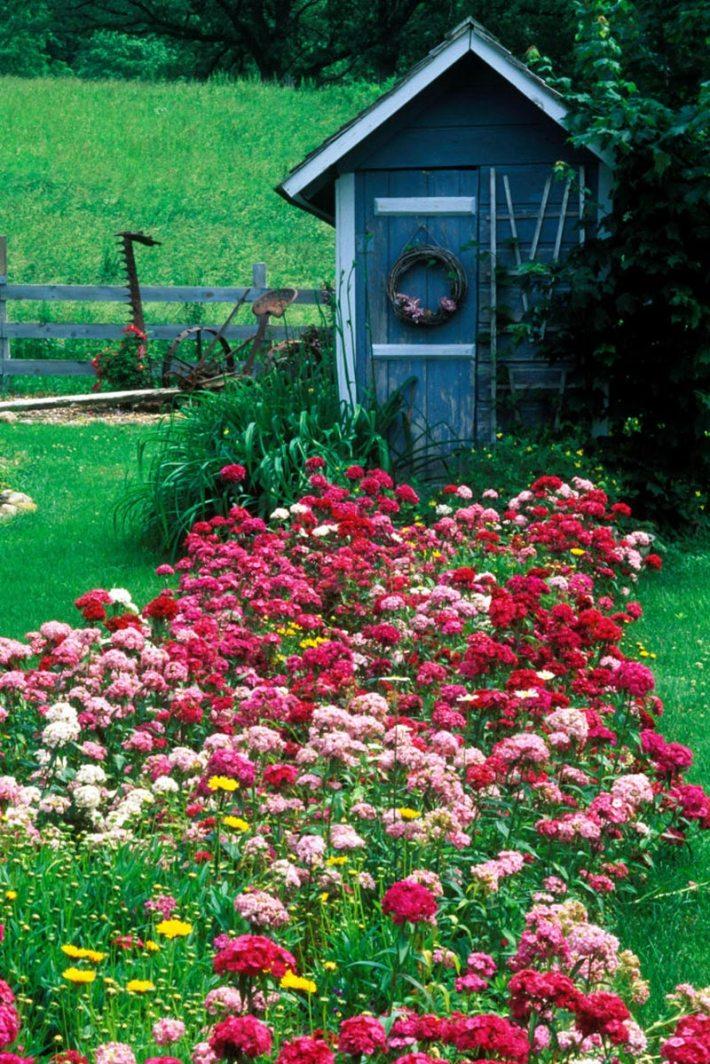 Quiet Corner:Amazing Backyard Landscaping Ideas - Quiet Corner on Back Patio Landscaping id=19066
