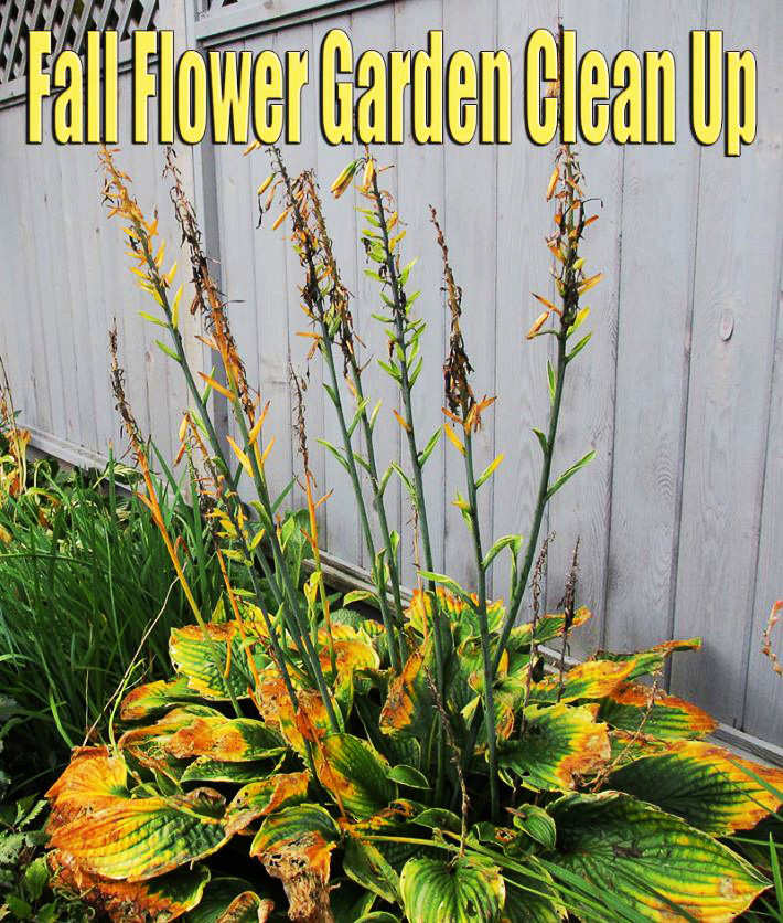 Fall Flower Garden Clean Up - Quiet Corner