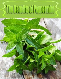 The Benefits of Peppermint