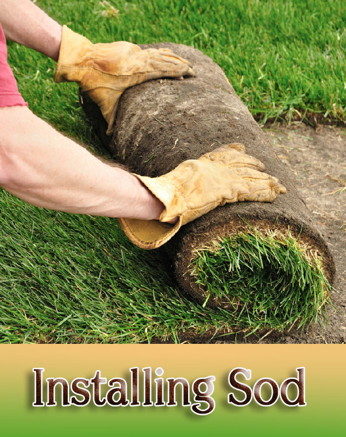 DIY – How to Install Sod for a New Lawn