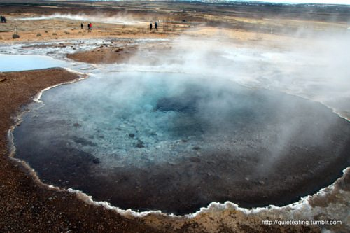 Geysers, waterfalls, craters and fine Icelandic cuisine
