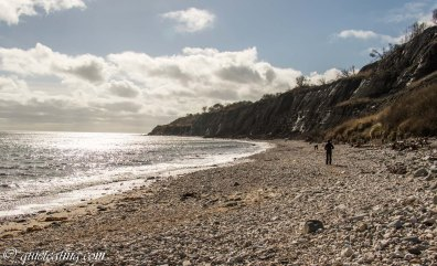 Photo of the seaside with random walkers.