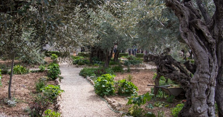 Jordan river, Masada, Dome of the Rock and the Garden of Gethsemane