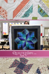 Our renters have brought in some amazing projects recently. Come take a look at what they've been getting quilted on our APQS longarm machines!