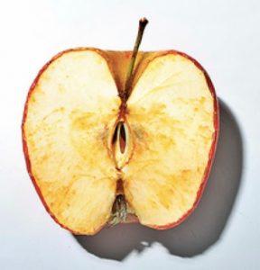 manzana oxidada envejecida oscura marrón