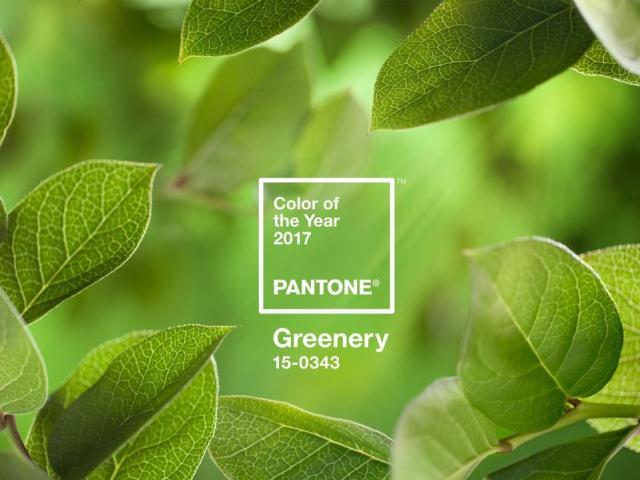 Pantone color of the year 2017-greenery-quinju.com