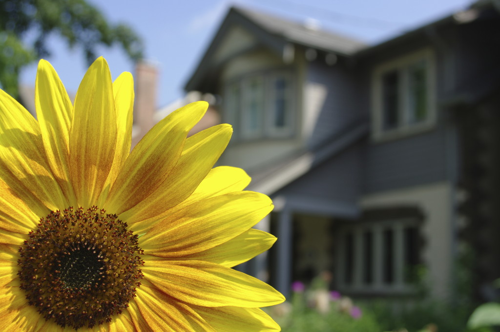 springtime-home-spring-home-maintenance-quinju.com