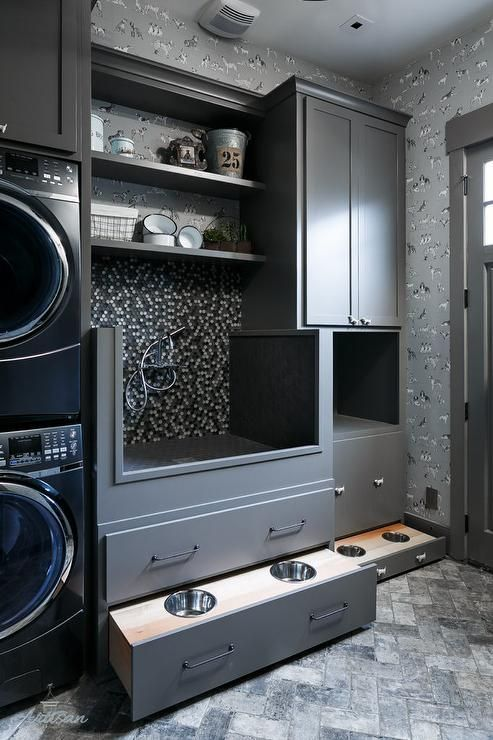 Laundry Room Renovation Ideas with your pet in mind - quinju.com