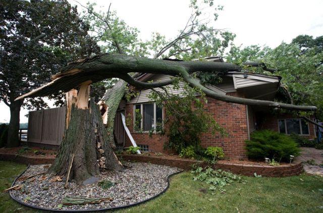 House Insurance - quinju.com