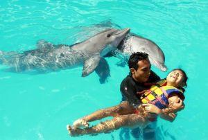 Reciben terapias asistidas con delfines niños y niñas con discapacidad