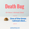 Death Bug AKA: How I Almost Died Last Night
