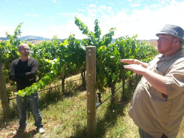 Terrific Tours and Azari Wines