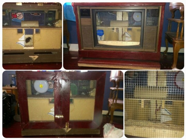 Hamstervision: Homemade Hamster Cages and Other Pet Palaces