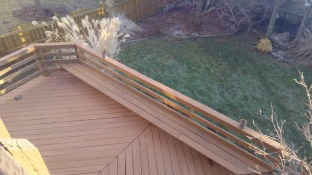 Backyard Photo captured with Sharp AQUOS Crystal