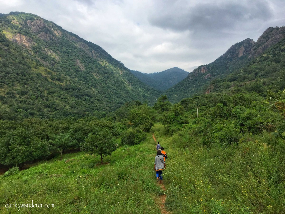 An offbeat trek in Kamarajar valley Tamil Nadu