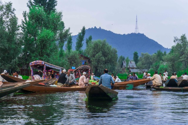 Morning floating market srinagar