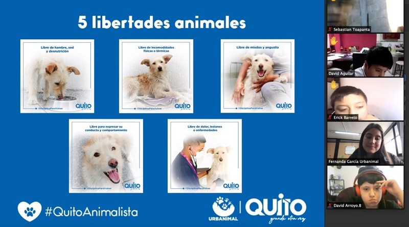 Educación bienestar animal