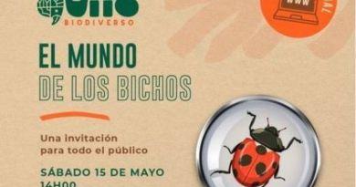 Quito Biodiverso: un recorrido especial por el mundo de los bichos