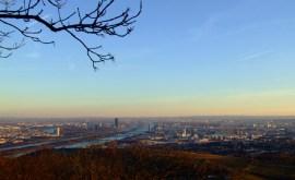 inverno-2014-vienna (5)