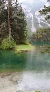 parco-stiria-lago-verde-austria-escursioni
