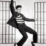 Quootip   Fantasma Elvis