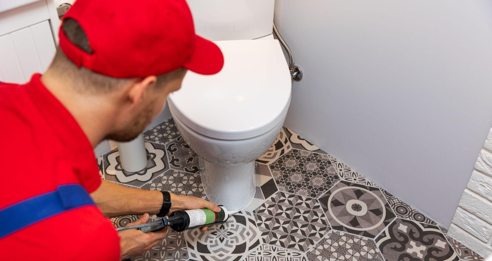 Comment Remplacer Changer Renover Des Toilettes Ou Wc Prix Cout Devis