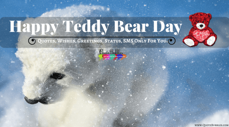 Happy Teddy Day Quotes, Images, Wishes, Status, Messages (SMS) In English For 2018