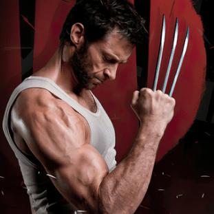 Wolverine (Marvel) 9
